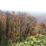 Sharp Mountain Creek