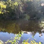 Baldridge Creek